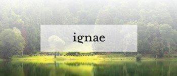 ignae| a beleza luxuriante dos açores!