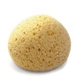 suavinex esponja natural para o banho do bebé 1unidade