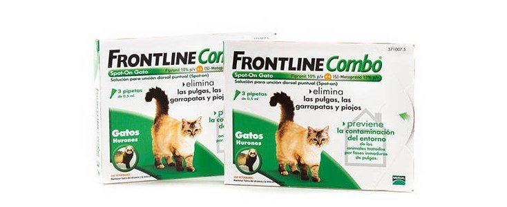 frontline combo spot 3 pipetas gatos