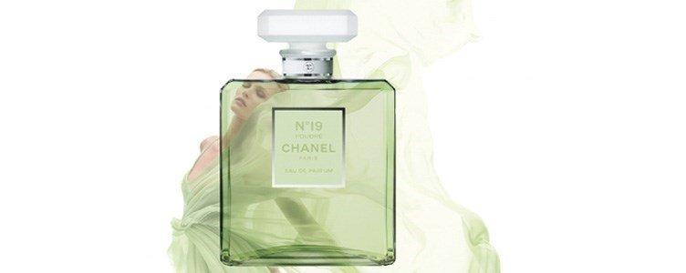 chanel n19 poudre eau parfum