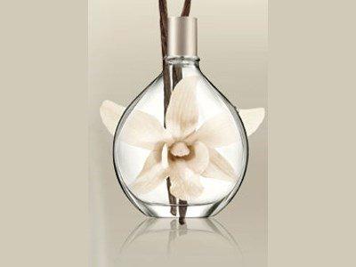 dkny pure drop vanilla scent spray