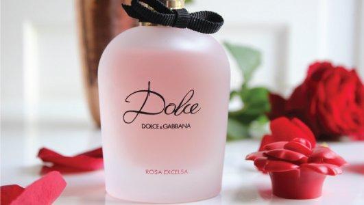 dolce gabanna rosa